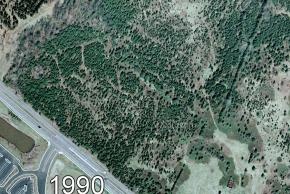 Color aerial photograph of the future site of Carson Middle School, circa 1990. The farm fields have been replaced by a lush green forest.